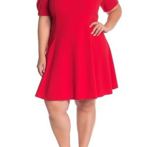 Puff sleeve fit and flare dress NWT
